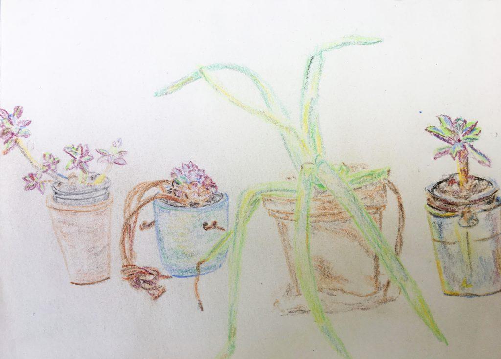 Sketch 2 - Charles Daborn