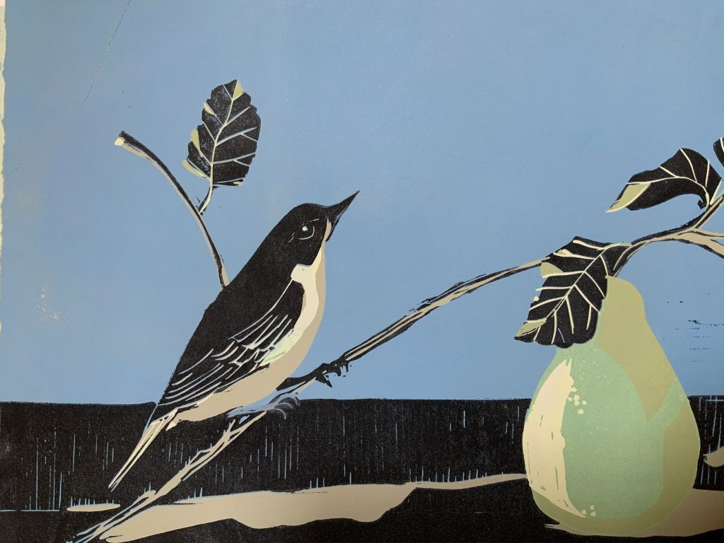 Bird and Pear  -  Linocut  -  A4 (plus mount)  -  £65