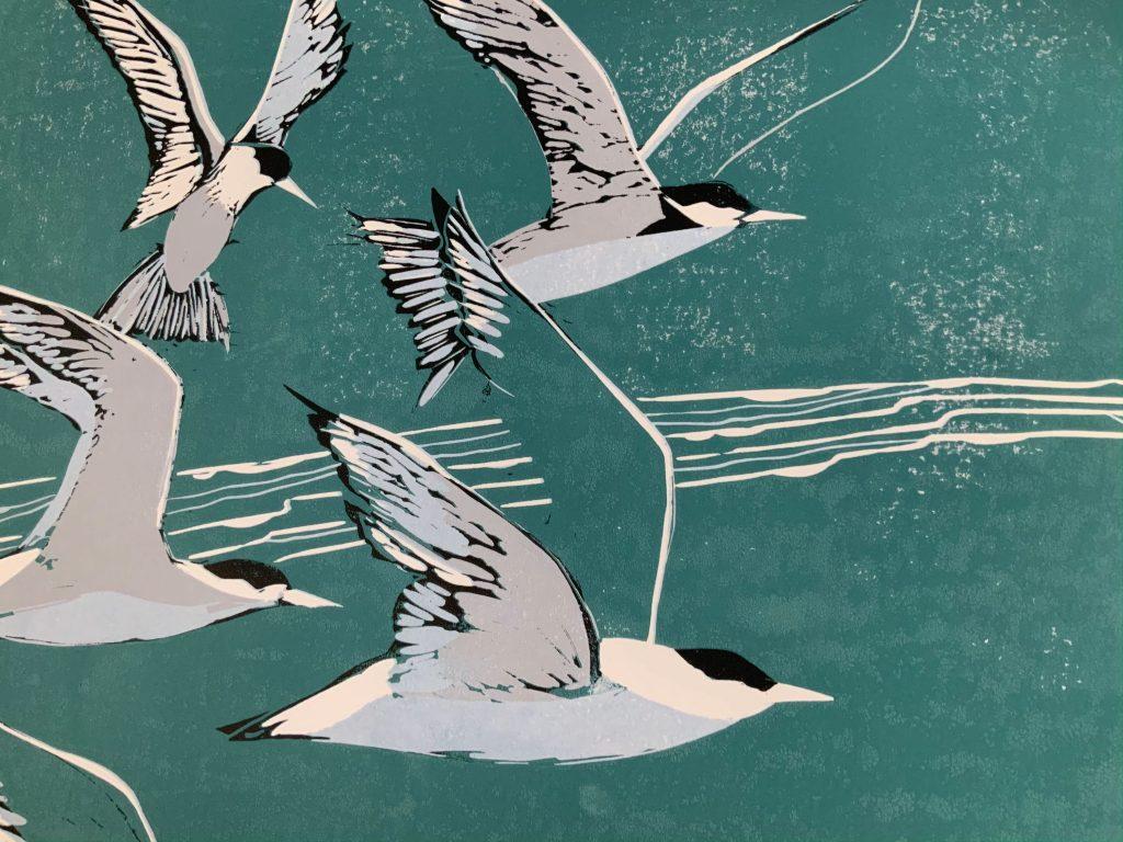One Good Tern  -  Linocut  -  30 cm x 30 cm (50 cm x 40cm  mount )  -  £135
