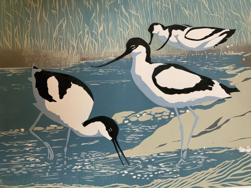 Summer Visitors  -  Linocut  -  40 cm x 30 cm (50 cm x 40 cm  mount)  -  £135