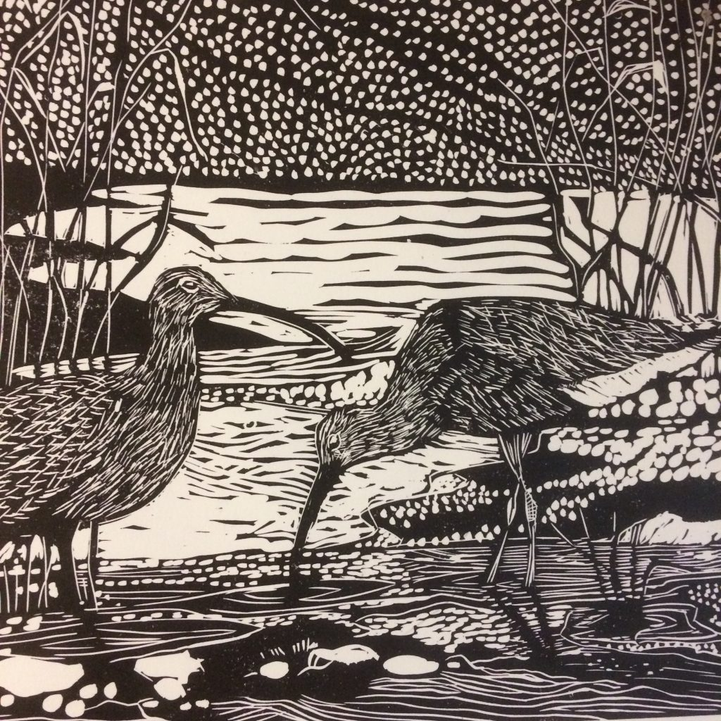 Waders  -  Sold