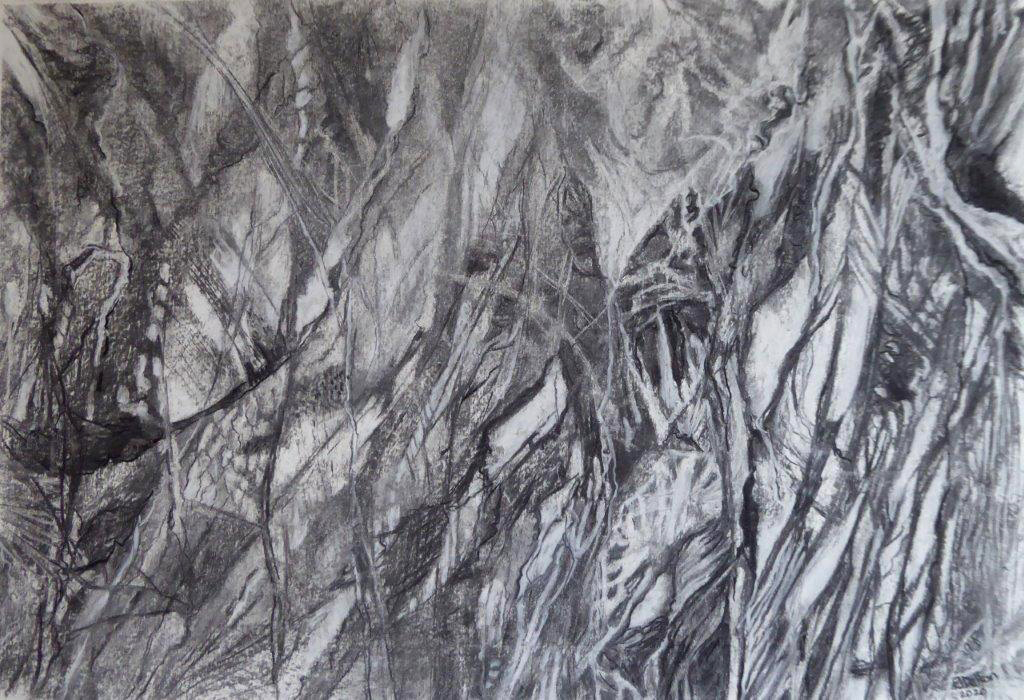 Shadowlands  -                    Charcoal - Jane Dalton - Unframed 56 x 38 - £20
