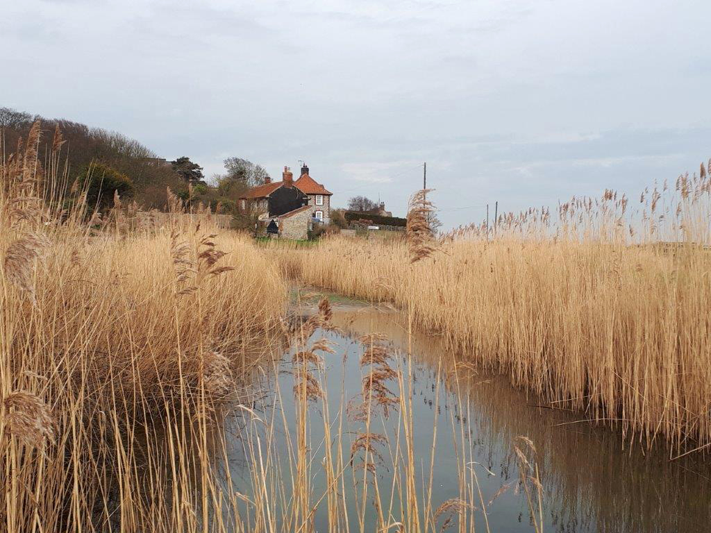 Cley Cottages - Jane Dalton