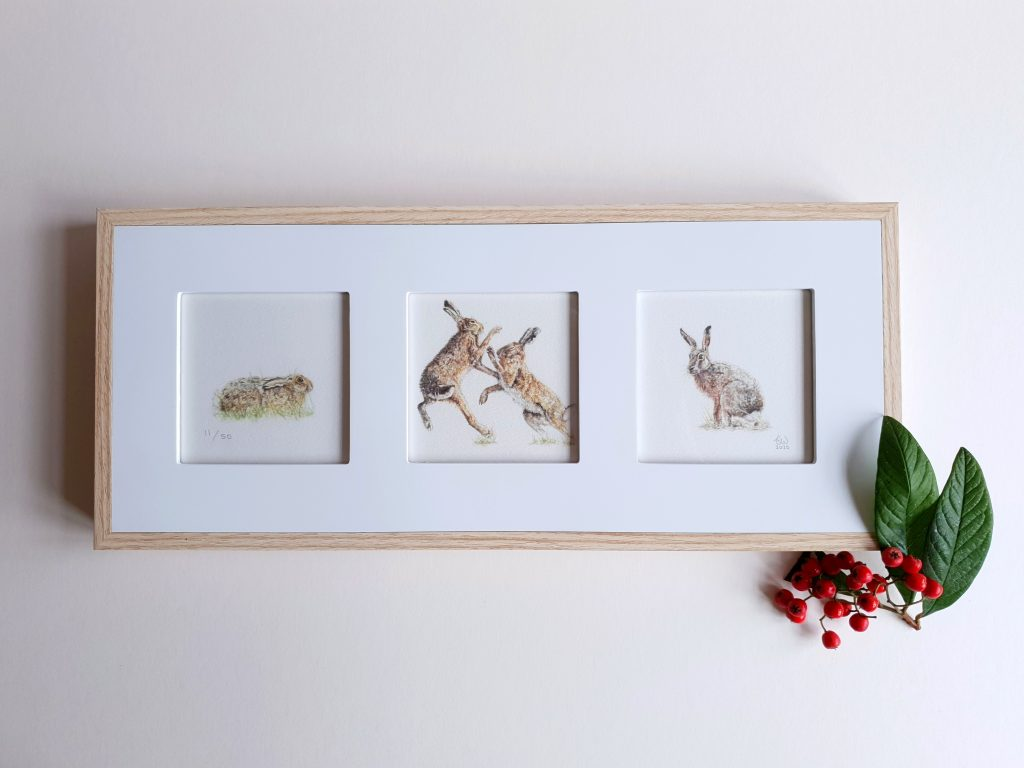 Tori Woolley - Trio of Hares (Framed / Signed) - Watercolour - 41 x 18 cm - £60 (Please note Posting & Packaging prices are in addition to this)
