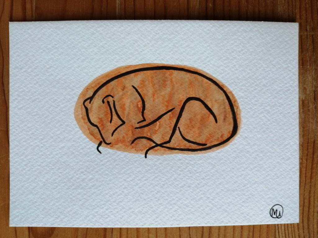 Maddy Iszchak - Sleeping Greyhound -  Ink and watercolour  - 14.8 x 10.3 cm - £30