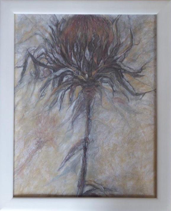 Jane Dalton - Protea - Ink/Pastel - (Framed) - 50 x 62 cm  - £70