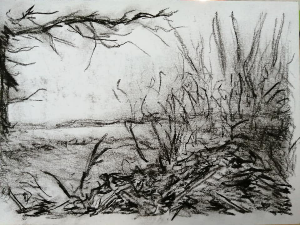 Sam Clift - The woods edge - Charcoal on paper - 15 x 10.5 cm - £75