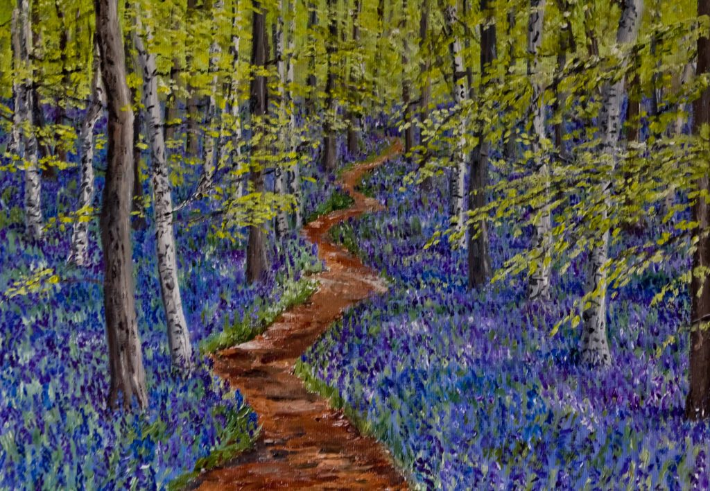 Clive Bohannan - Bluebell Woods - Oil on Canvas - 40 x 30 cm - £120