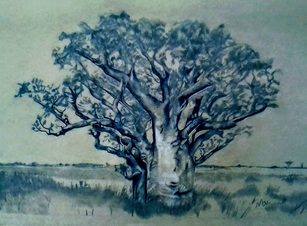 Michael Anthony Lees - Me, the Tree	- Graphite pencils & ballpoint pens - 42 x 30 cm (A3) - £80