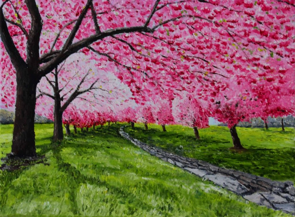 Clive Bohannan - Pink Cherry - Oil on Canvas - 40 x 30 cm - £120