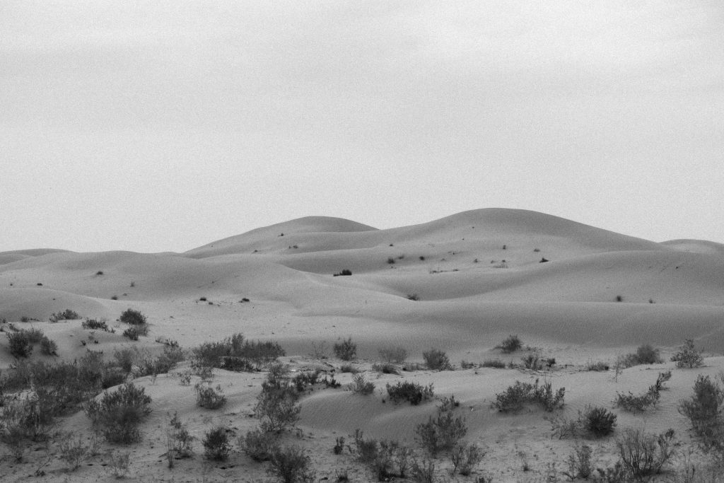 Lorna Faulkes - Sands of Turkmenistan - Photo print - a4 / a3 - £18.50 / £37.50
